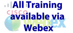 Business Englisch training via Webex